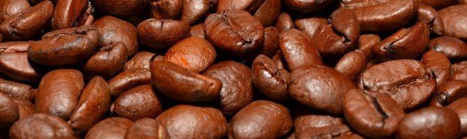 Особенности производства кофе, его виды и виды кофейных напитков
