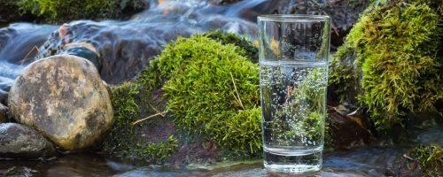 Правильное питание и природная вода – залог здоровья