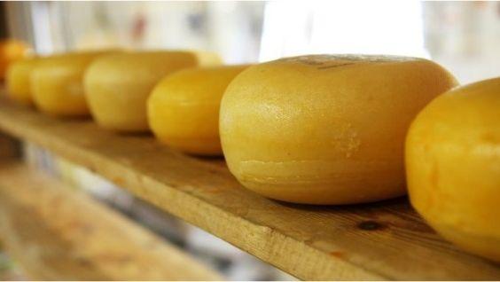 технология приготовления сыра